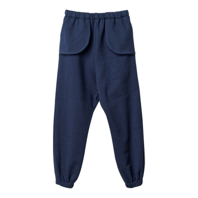 Sport pants in blue